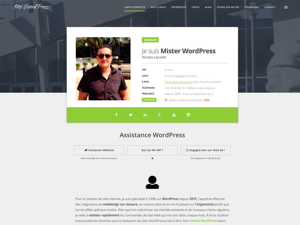 Webmaster Expert WordPress